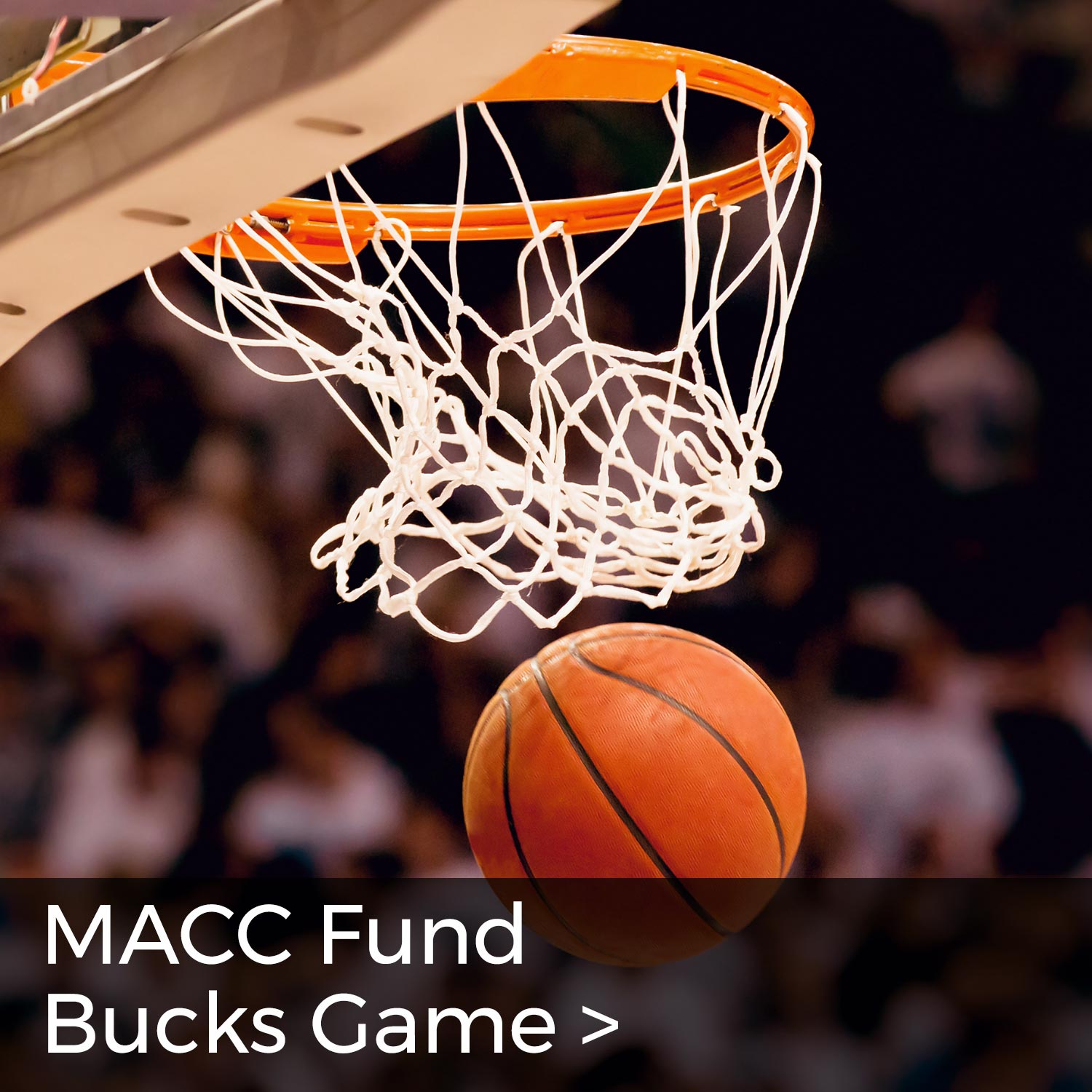 MACC Fund Bucks Game